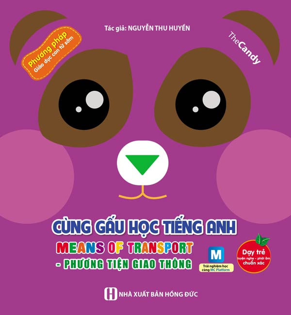 cung-gau-hoc-tieng-anh-phuong-tien-giao-thong-bia-1
